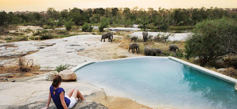Londolozi-South-Africa-gay-travel-luxury-safari-gay-friendly-resort-South-Africa-gay-honeymoon-granite-pool