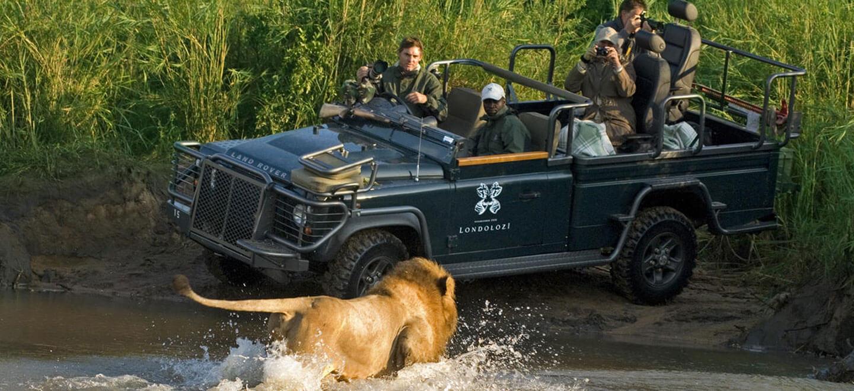 gay safari in south africa