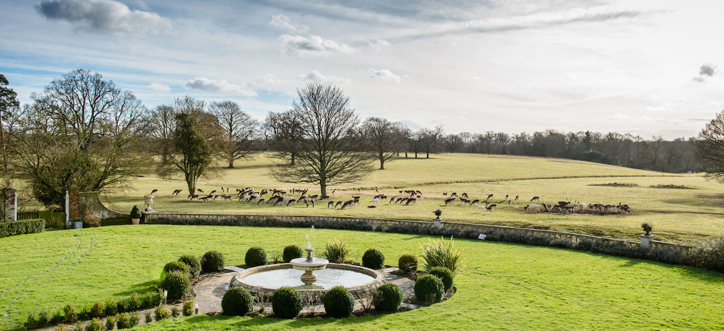Deer-grazing-at-Parklands-gay-wedding-essex-venue-the-gay-wedding-guide-house