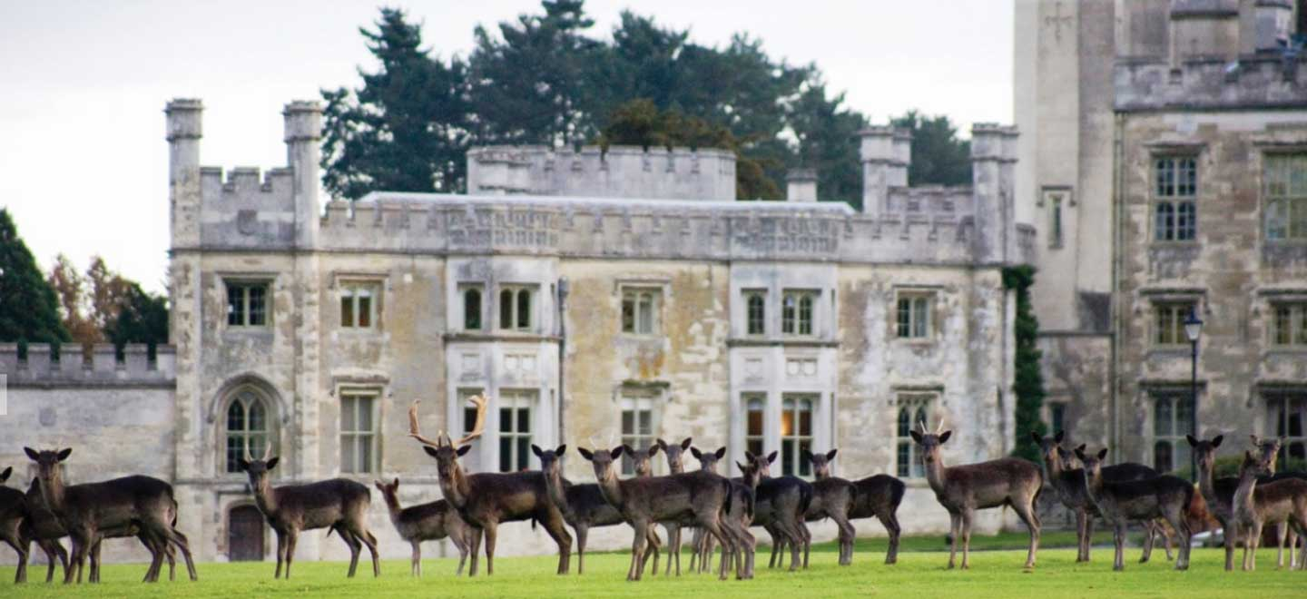 Ashridge-House-Berkhamsted-Deer-Castle-Wedding-Venue-Hertfordshire-via-The-Gay-Wedding-Guide