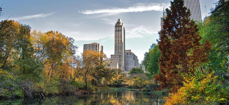 New York Central Park image Ed Yourdon Nov 2009 via commons wikimedia.org  3